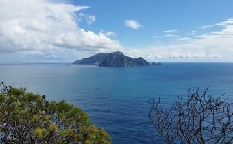 Capri da Punta Campanella - Amalia Guarracino